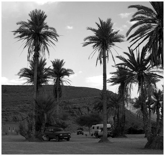 morocco5_1c.jpg
